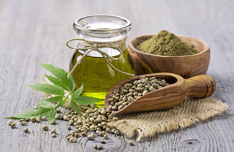 Hemp in various forms on a desk - Plant, seeds, powder, oil.