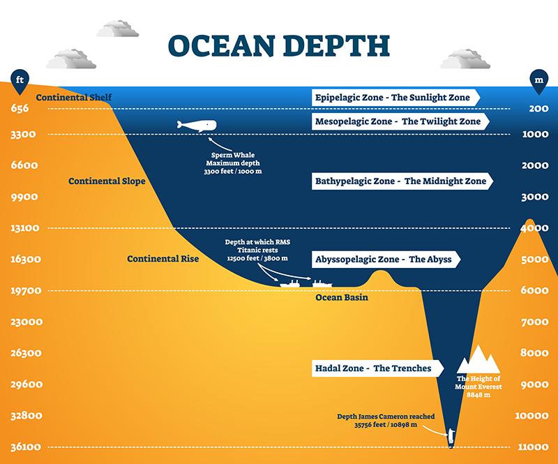 Ocean depth zones infographic