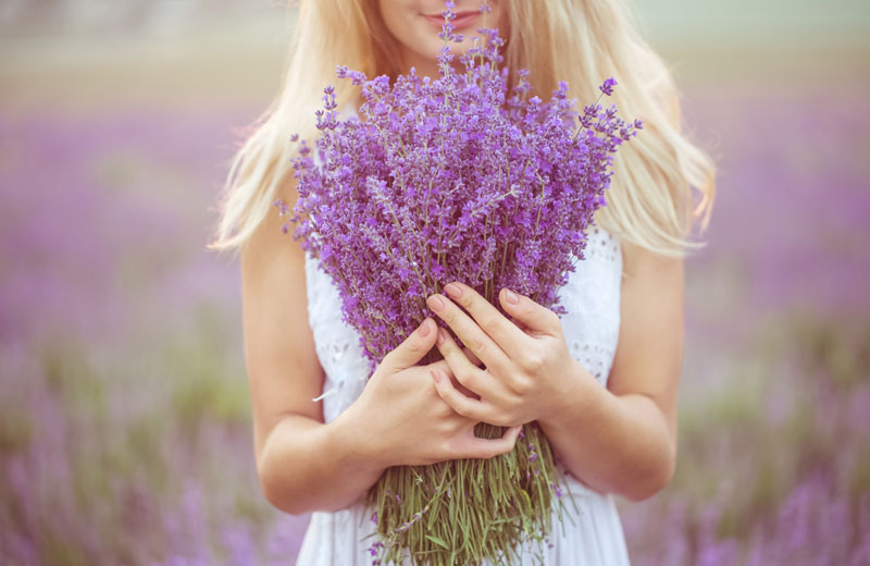 How to Care for Lavender to Help Alleviate Stress