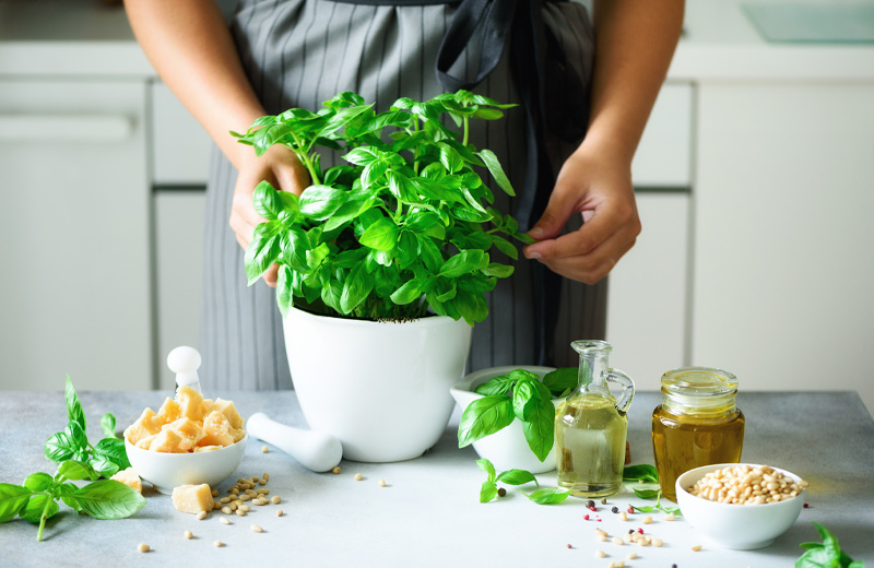 5 Delicious Spring Recipes to Make with Homegrown Basil