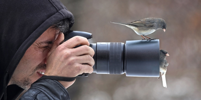 A photographer testing out a macro lens from his photography starter kit to photograph some birds