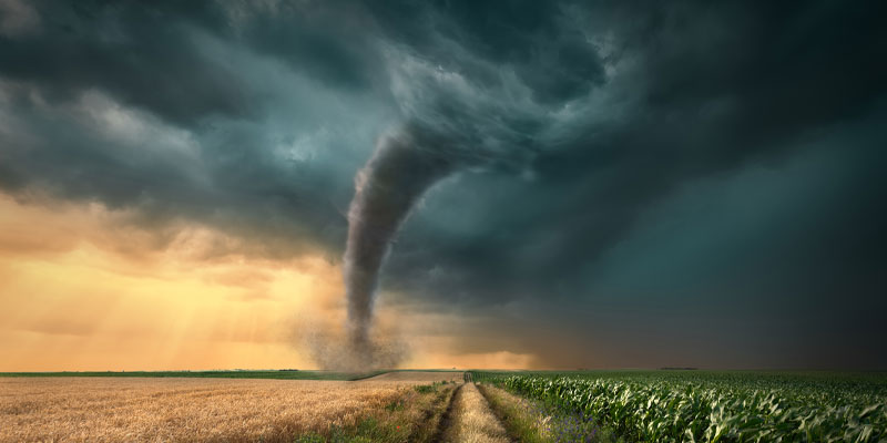 An example of extreme weather, driving on straight dirt road towards the ominous tornado storm through the cultivated fields of wheat and corn crops.