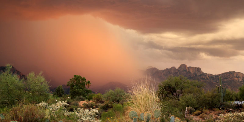 Huge rolling monsoon clouds with rain at sunset in the desert over the catalina mountains in Tucson, Arizona, in an example of extreme weather.