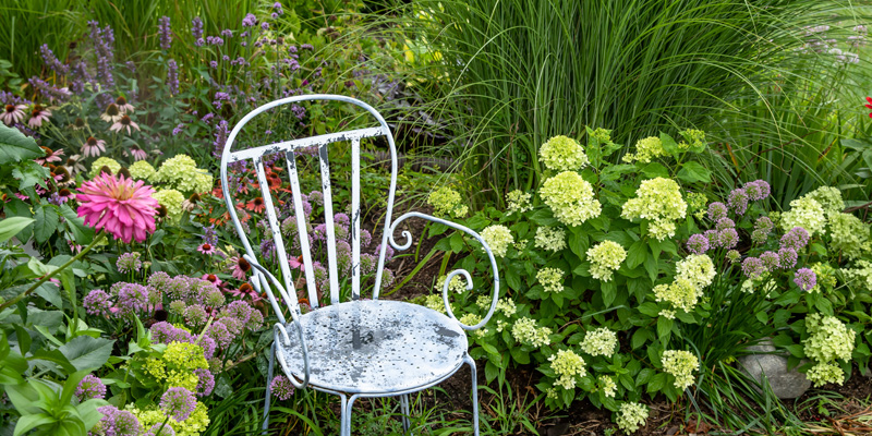 Vintage blue and white painted metal chair nestled in a a private spot in the garden representing mindfulness for pain.